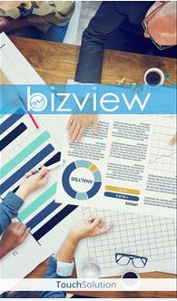 bizview_1